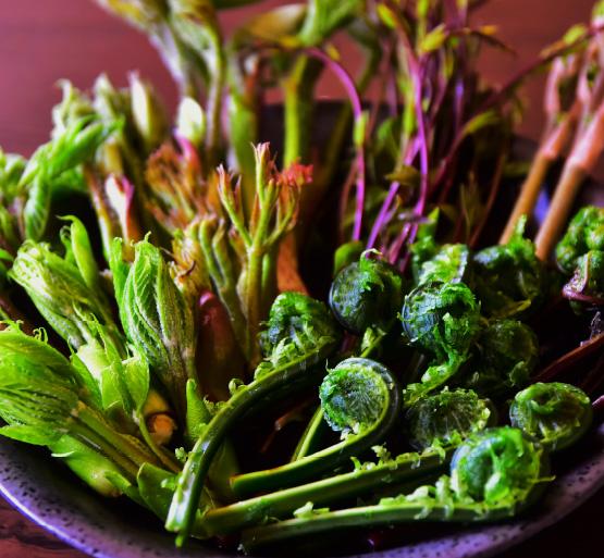 山菜料理の体験イメージ