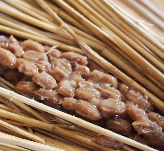 納豆造り体験イメージ